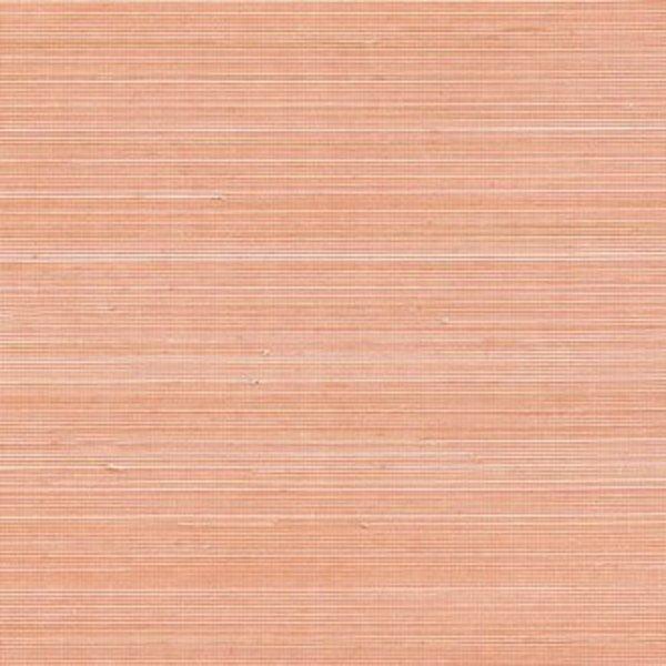 Coiba RM11039