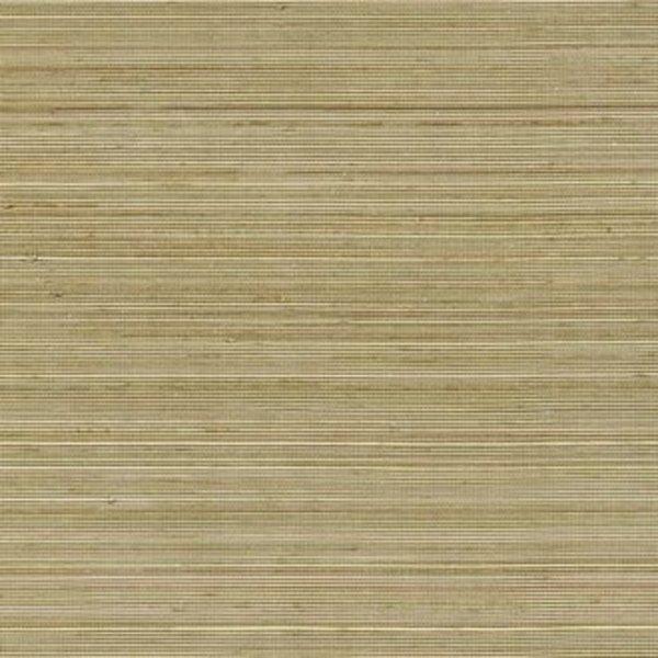 Coiba RM11068