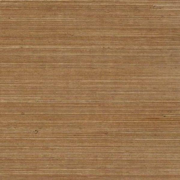 Coiba RM11071
