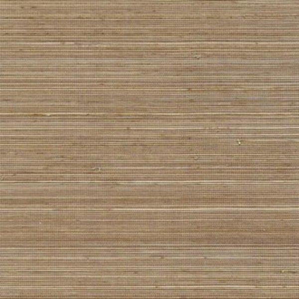 Coiba RM11074