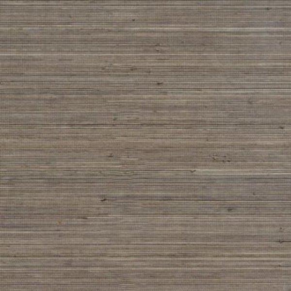 Coiba RM11087