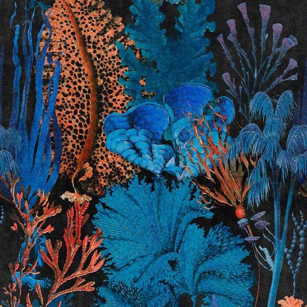 Coral Reef WP20298