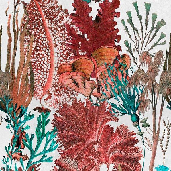 Coral Reef WP20299