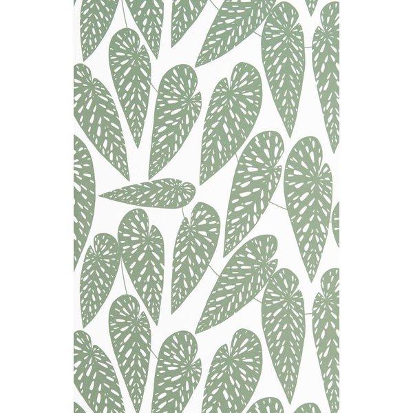 Tropics Foliage  MISP1290