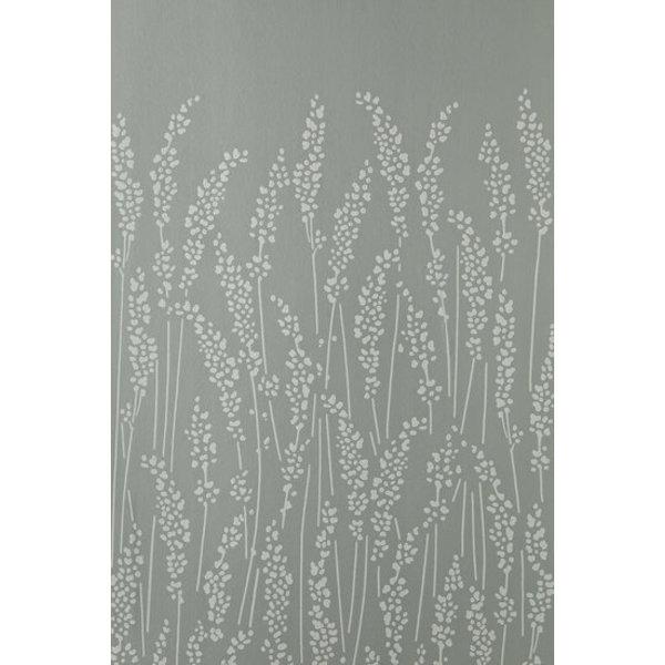 Feather Grass BP5102