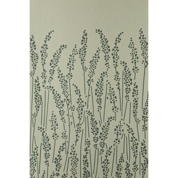 Feather Grass BP5105
