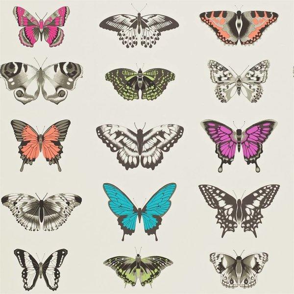 Papilio Roze, Paars, Grijs, Groen, Zwart 111079