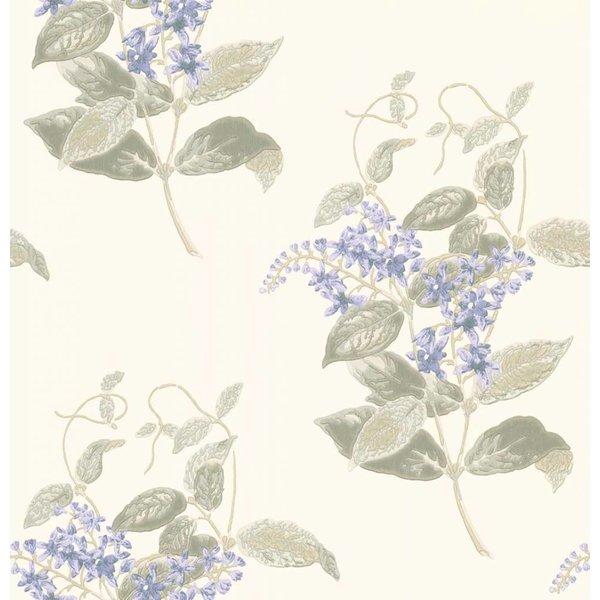 Madras Violet Violet, Grey (Wit, Groen, Grijs, Lila) 100/12057
