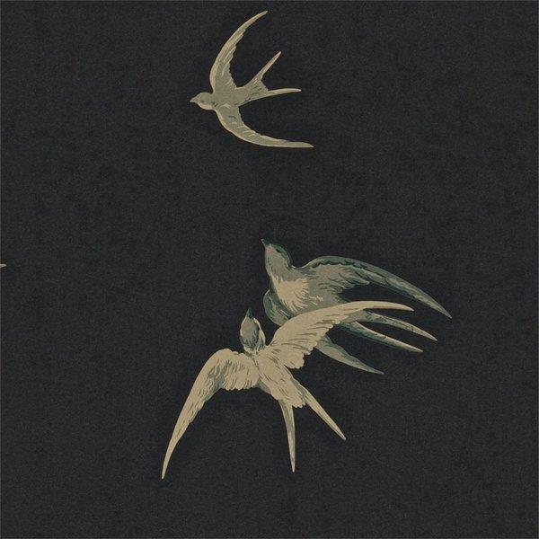 Swallows Black