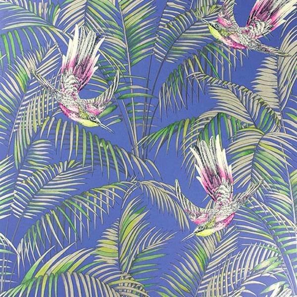 Sunbird Blue/Fuchsia/Metallic