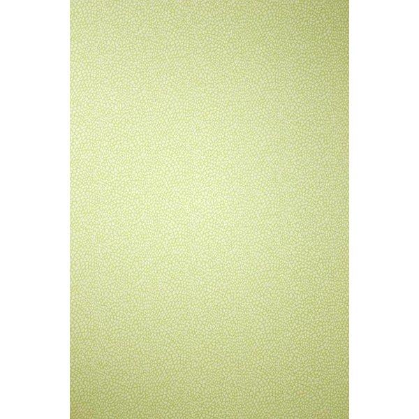 ORIOLE Light Goldenrod Yellow W6491-05