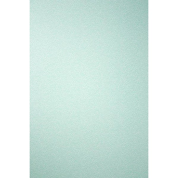 ORIOLE Pale Turquoise W6491-06