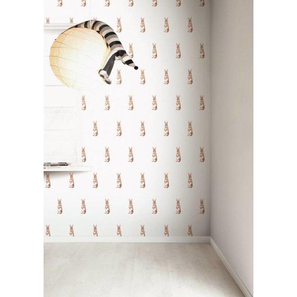 Wallpaper 050
