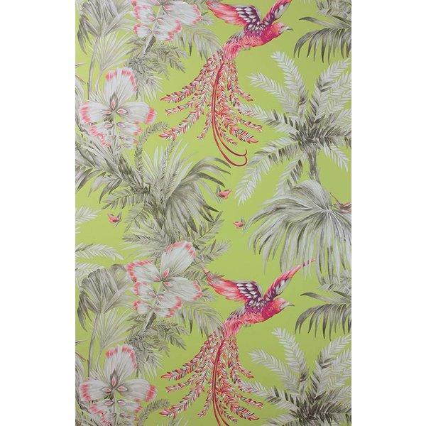 Bird of Paradise Lemon/Coral W6655-01