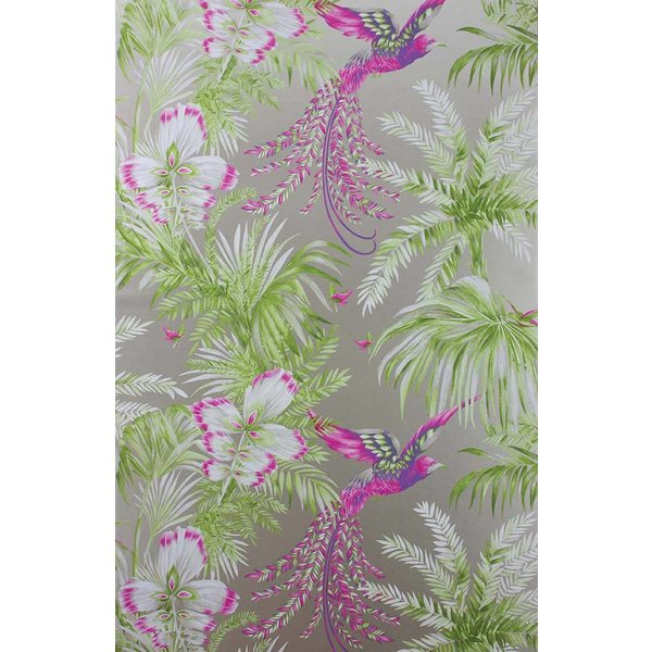 Bird of Paradise Kiwi/Violet W6655-03