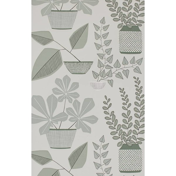 House Plants Wallpaper Brampton MISP1177