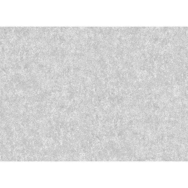 Salvage Metallic Zilver En Blauw 92/11052