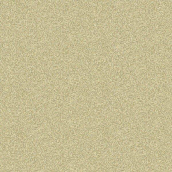 Goldstone 107/9041