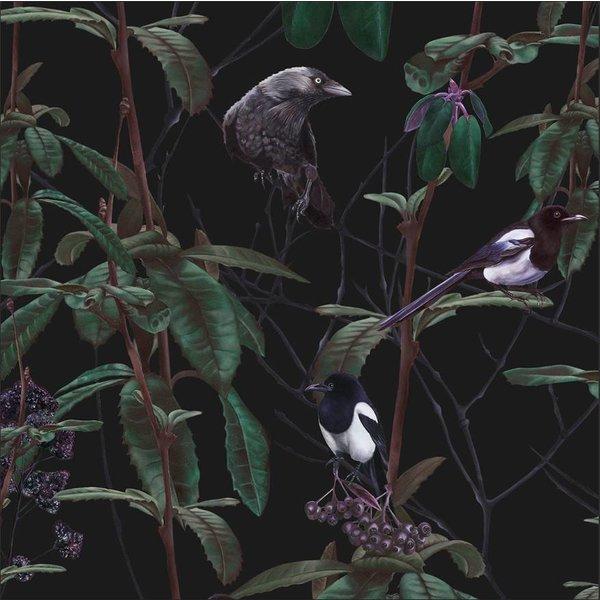 Folia Dark Wallpaper