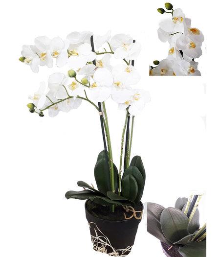 COVER UP HOC Levensechte Kunst Orchidee / Phalaenopsis plant 75 cm met pot ( 5-taks vol bloemen) kleur Wit