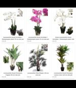 Kwaliteit kunstplanten tegen een betaalbare prijs