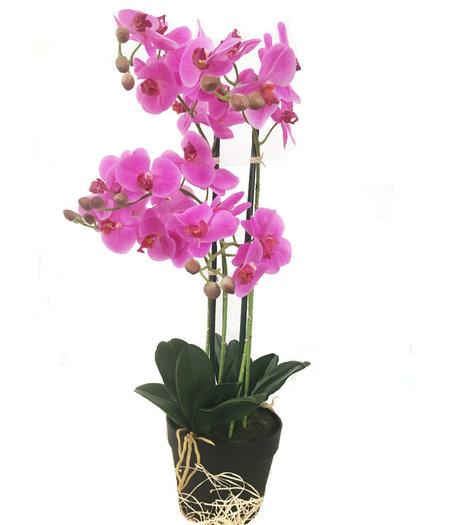 CUHOC Levensechte Kunst Orchidee / Phalaenopsis plant 75 cm met pot ( 5-taks vol bloemen) kleur Roze