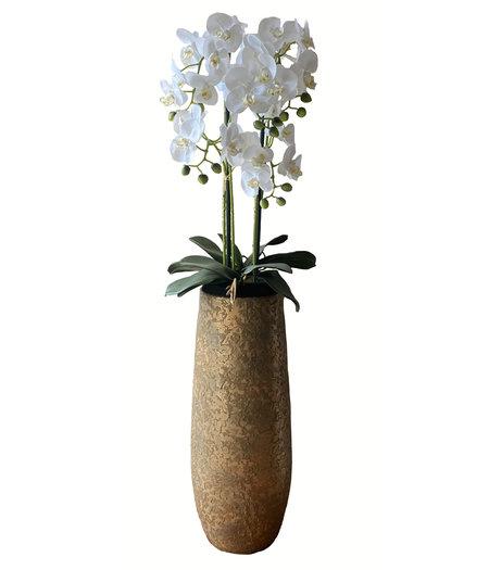 Levensechte Kunst Orchidee / Phalaenopsis plant 75 cm met zwarte pot ( 5-taks vol bloemen) kleur Wit