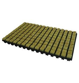 Cultilene Steenwoltray 2x2 cm 150 st. p/tray