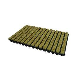 Grodan Steenwoltray 2x2 cm 150 st. p/tray 18 trays p/doos