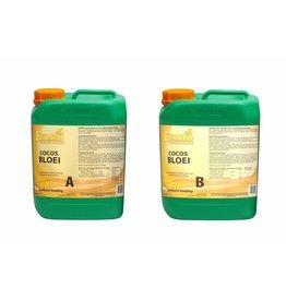 Ferro Cocos Bloei A+B 5 ltr