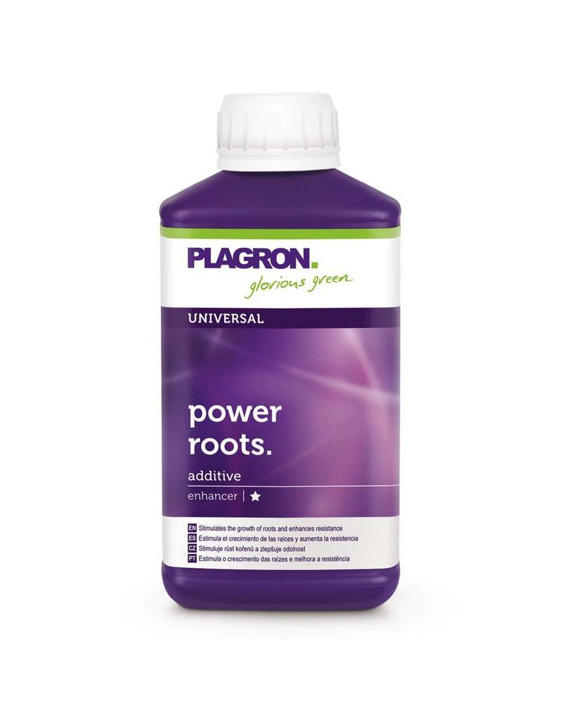 Plagron Plagron Power Roots 250 ml