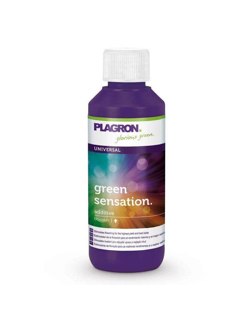 Plagron Plagron Green Sensation 100 ml