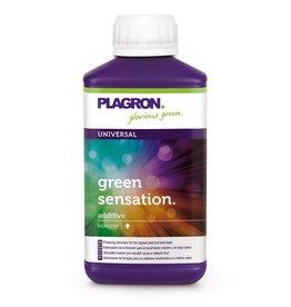 Plagron Plagron Green Sensation 250 ml