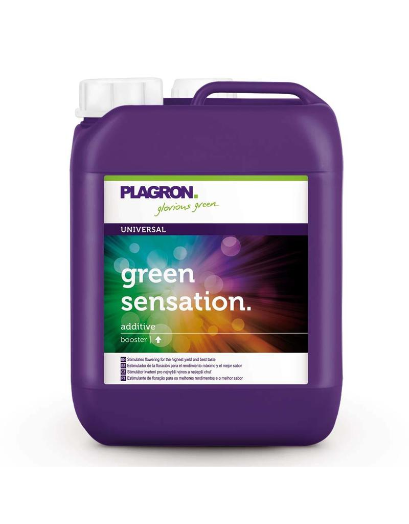 Plagron Green Sensation 5 ltr