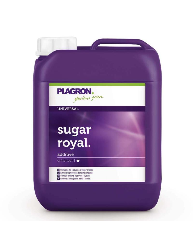 Plagron Plagron Sugar Royal 5 ltr