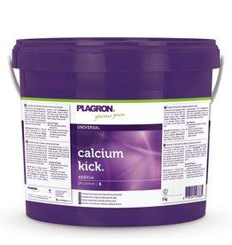 Plagron Plagron Calcium Kick 5 kg