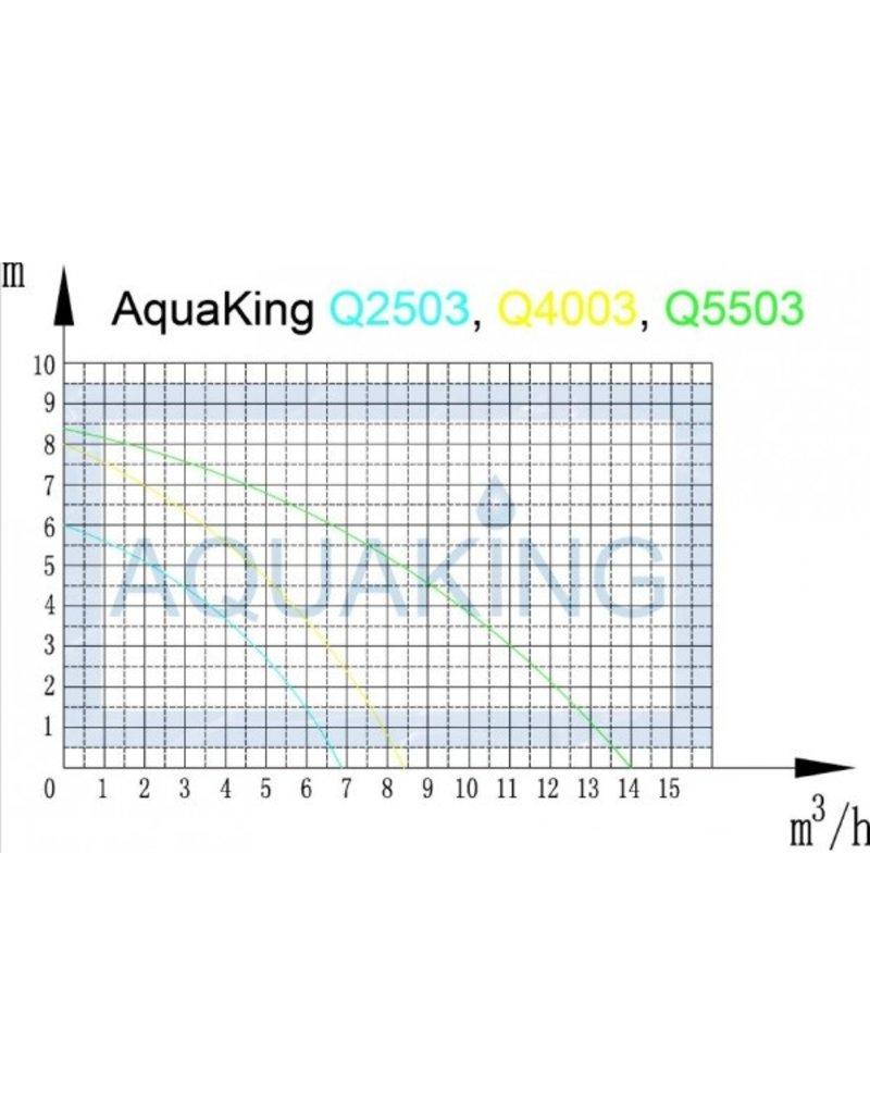 Aquaking Aquaking Dompelpomp Q4003