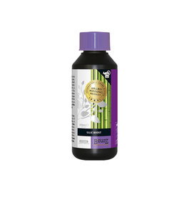 Atami B'cuzz Silic Boost 250 ml