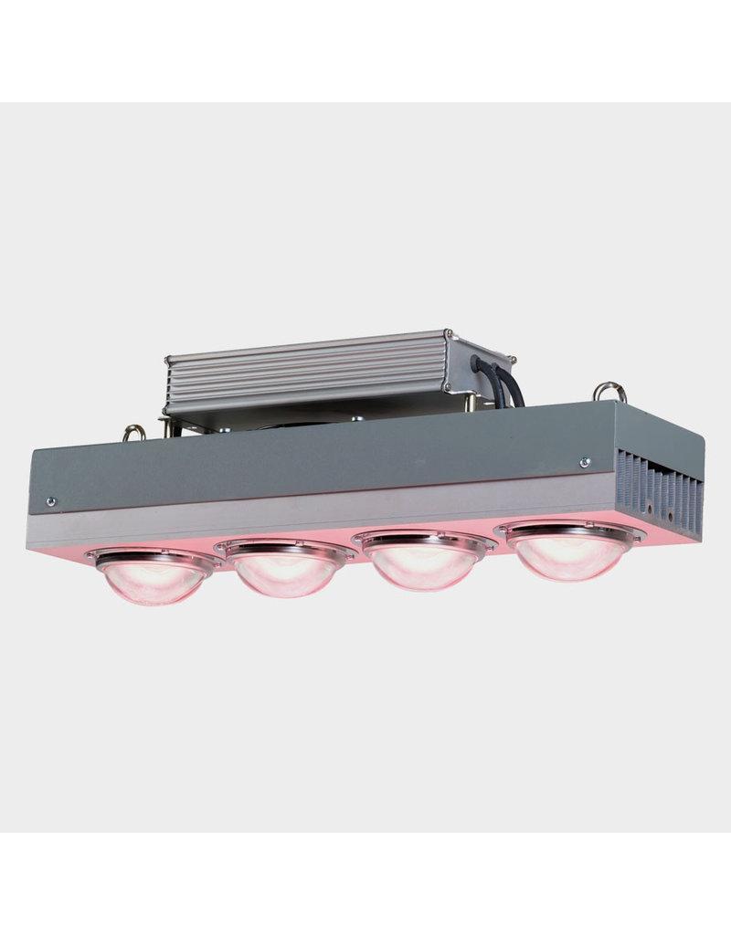 Spectro Light Spectro Light Blast 400