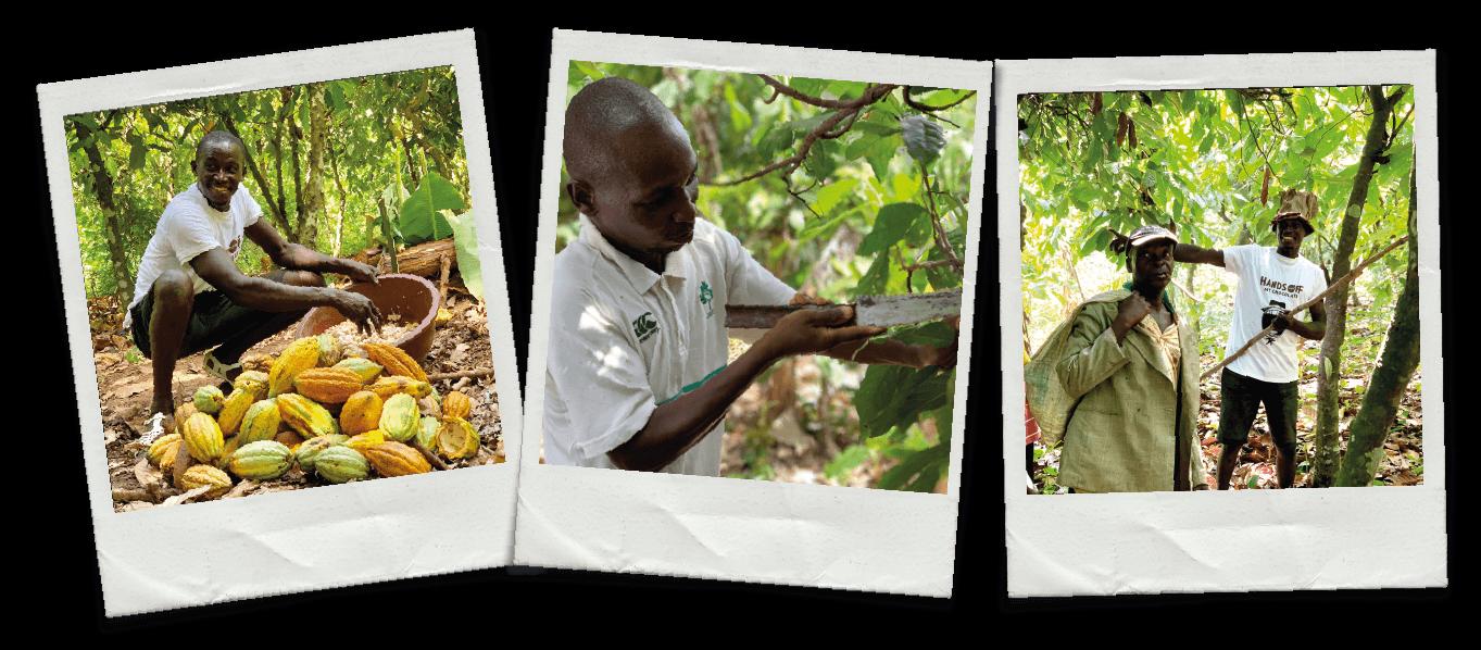 Duurzame chocolade - Cacaoboeren helpen