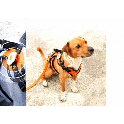 Honden veiligheids verlichting Matrix Ultra Led