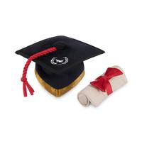 P.L.A.Y. Back to School Grad cap & diploma toy
