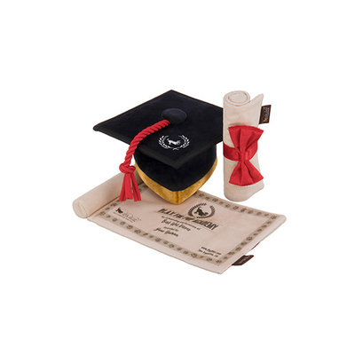 Back to School Grad cap & diploma toy