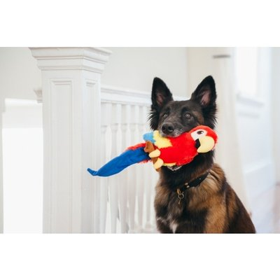 P.L.A.Y. Fetching Flock Collection - Parrot