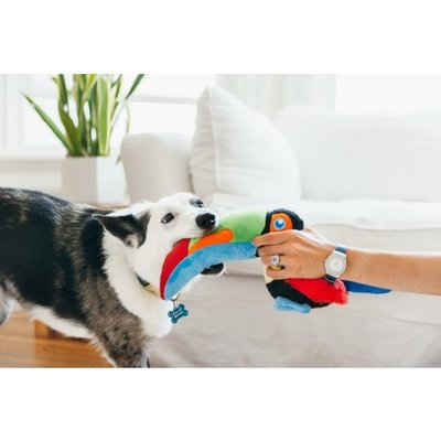 Fetching Flock Collection - Toucan