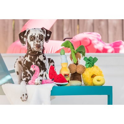 PLAY Tropical Paradise Collection - Canine Cerveza