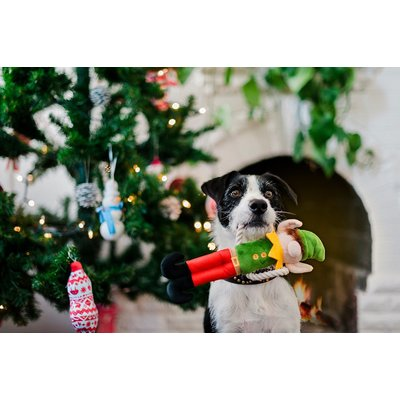 PLAY Merry Woofmas Collectie
