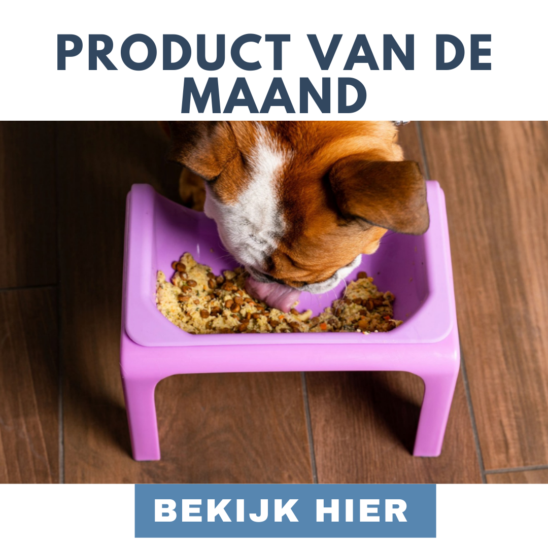 MadeForDogs Online Hondenspeciaalzaak - Gespecialiseerd in bijzonderheden. banner 2