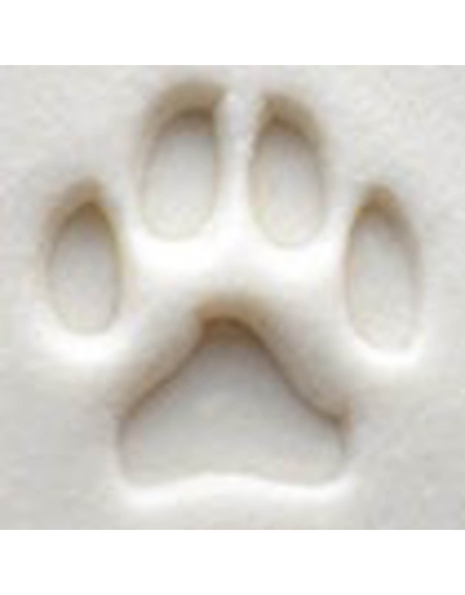 MKM tools Dogs Paw Stamp 1.5cm