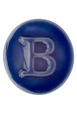 Botz Pro Saphire Blue 200ml